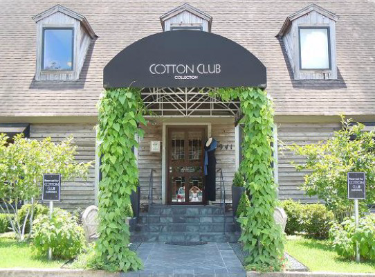 Shoptiques Boutique: The Cotton Club Collection