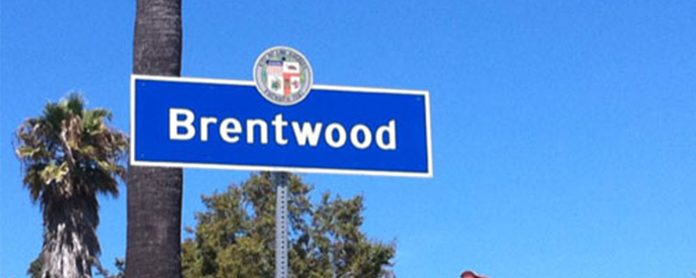 Shoptiques Neighborhood: Brentwood