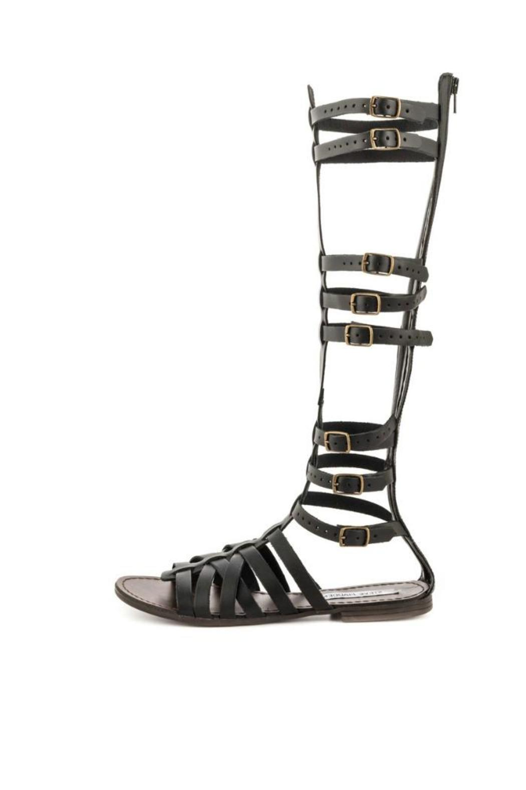27e6ac77013 Steve Madden Sparta Gladiator Sandal from New Jersey by The House ...