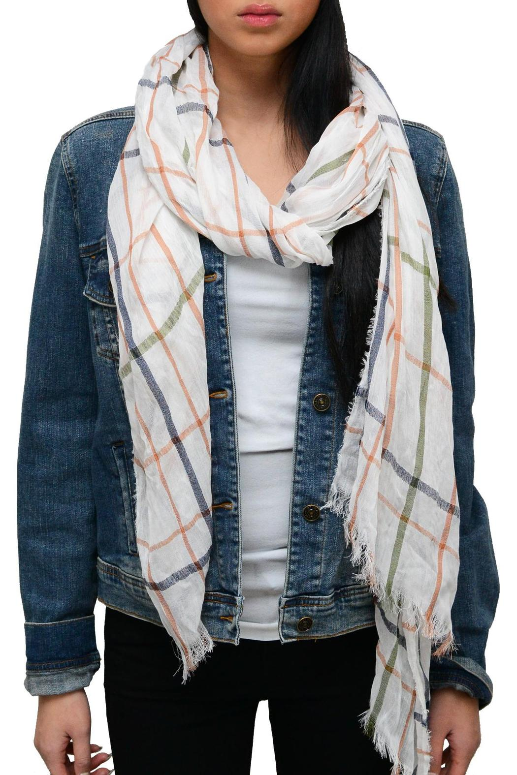 Simply Chic Plaid Pastel Scarf - Front Cropped Image