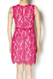 Darling Pink Lace Dress - Back cropped