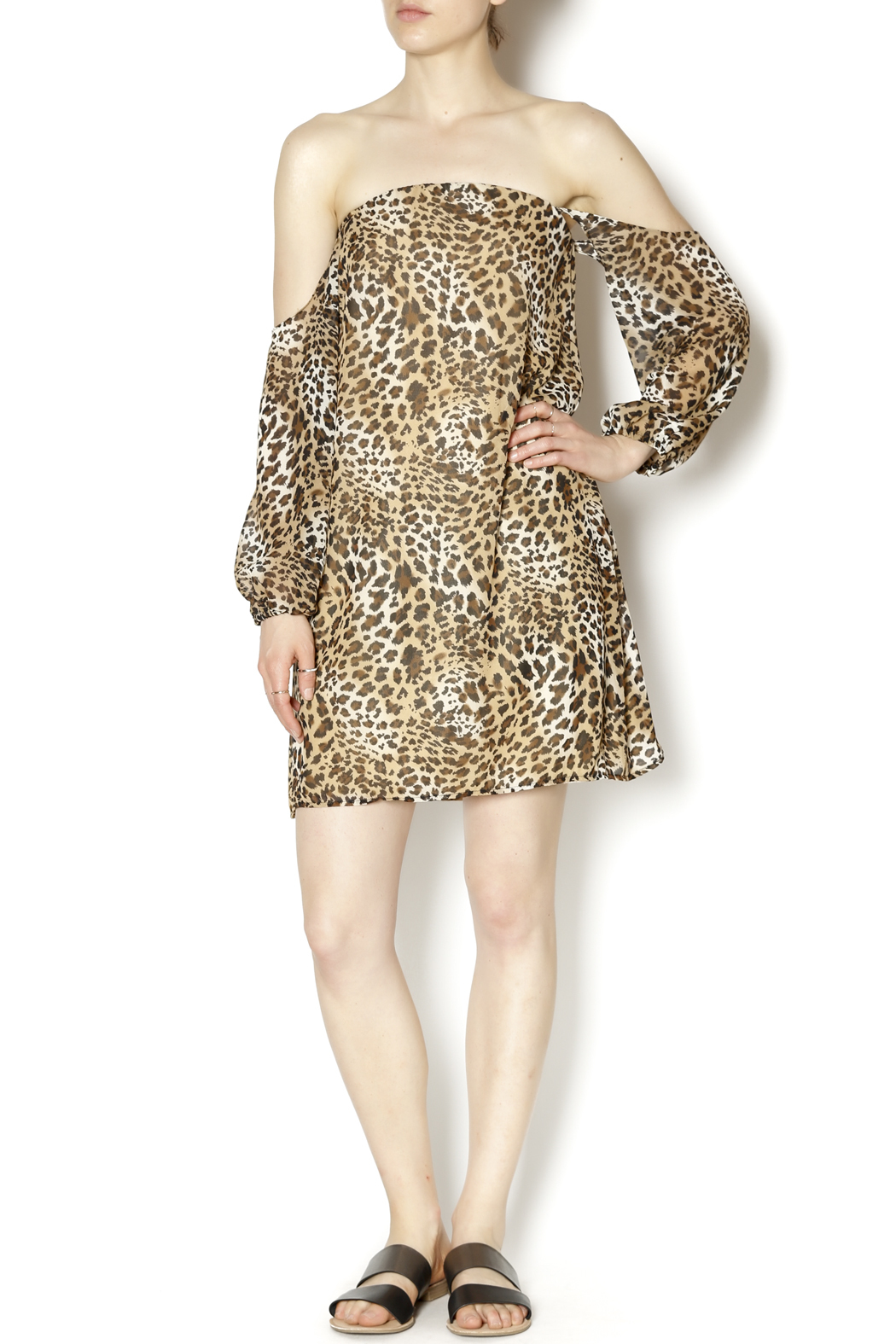 Turquoise Haven Leopard Dress - Front Full Image