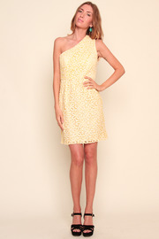 Shoshanna Embroidered One-Shoulder Dress - Front full body