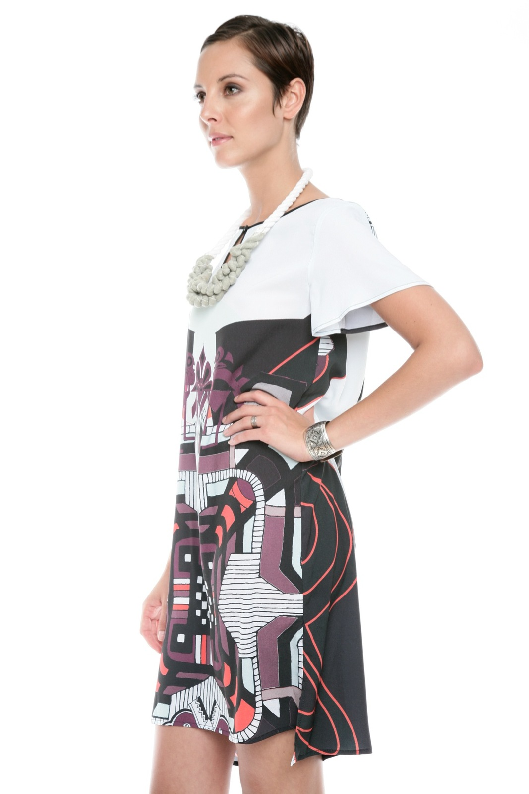 Clover Canyon Graphic Print Dress - Side Cropped Image