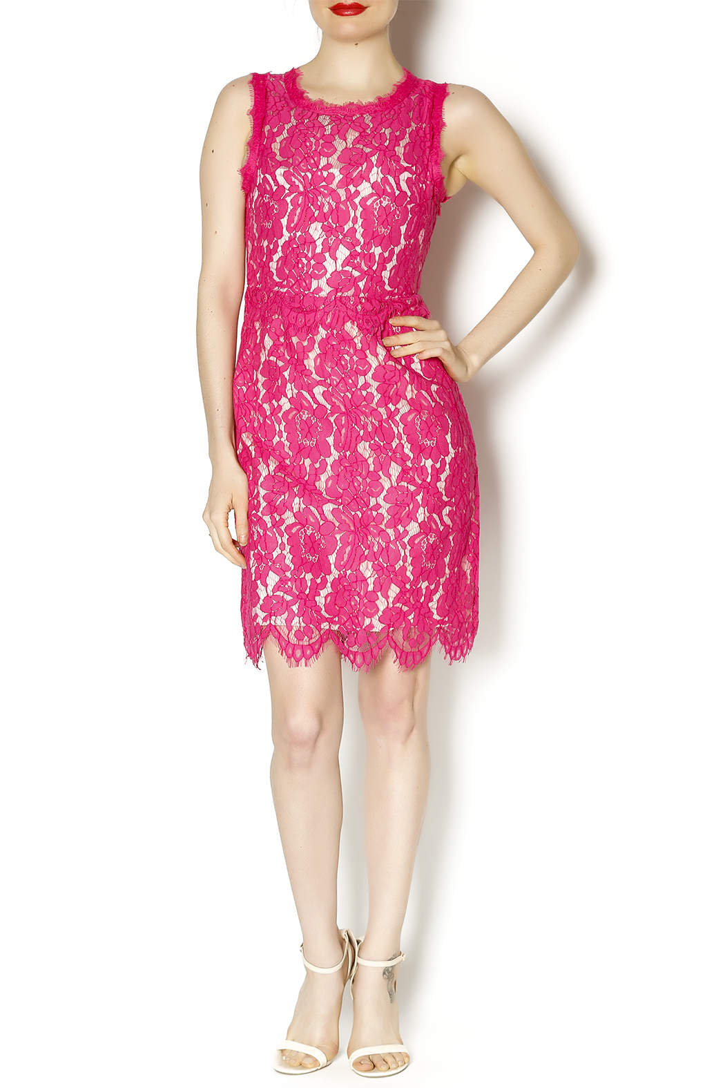 Darling Pink Lace Dress - Front Full Image