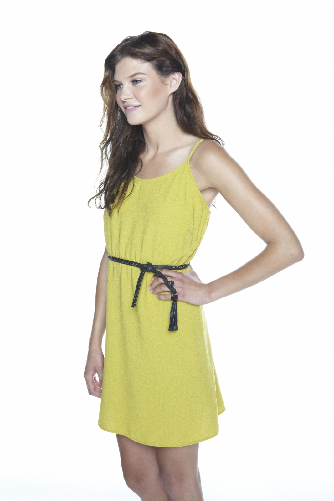 71 Stanton Belted Mini Dress - Side Cropped Image