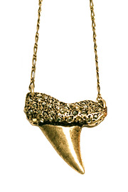 Shoptiques Product: Shark Tooth Necklace - Other