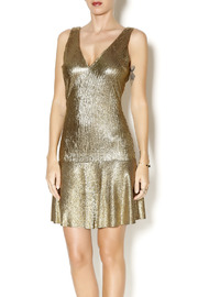 Sam & Lavi Metallic Gold Dress - Product Mini Image