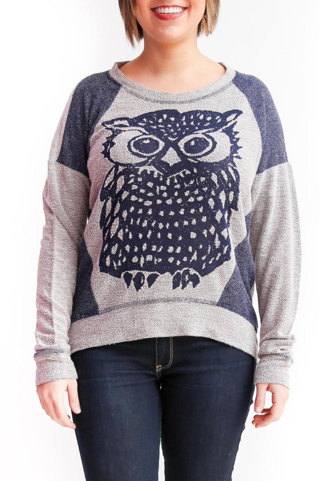 Coin 1804 Owl Pullover - Main Image