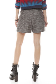 Cynthia Steffe High Waisted Shorts - Back cropped