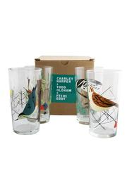 Hello World Birds Glass Set - Product Mini Image
