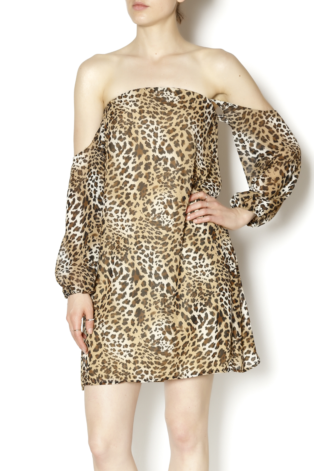 Turquoise Haven Leopard Dress - Main Image