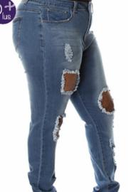 Posh Curves Curve Distressed Jean - Front full body
