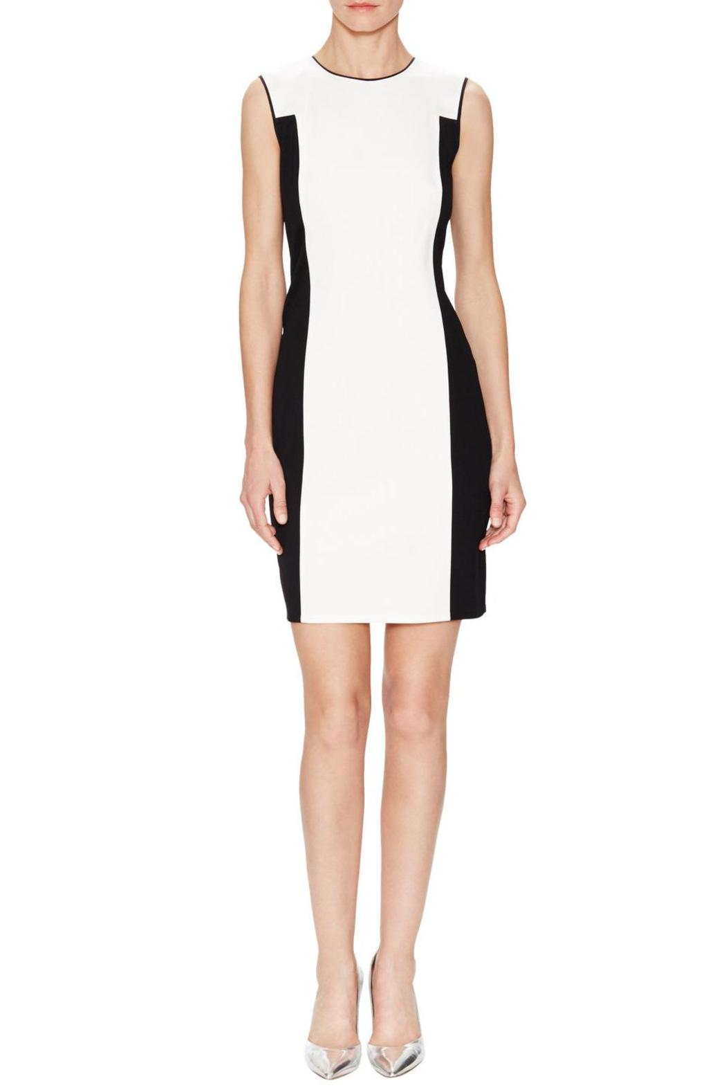 Halston Heritage Sophisticated Sheath - Front Cropped Image