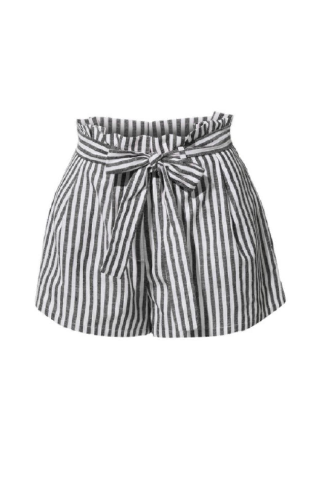 2Sable Striped Shorts - Front Cropped Image