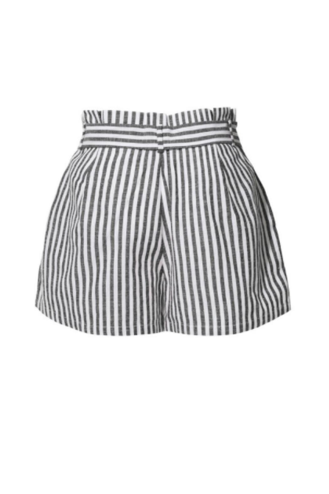 2Sable Striped Shorts - Front Full Image