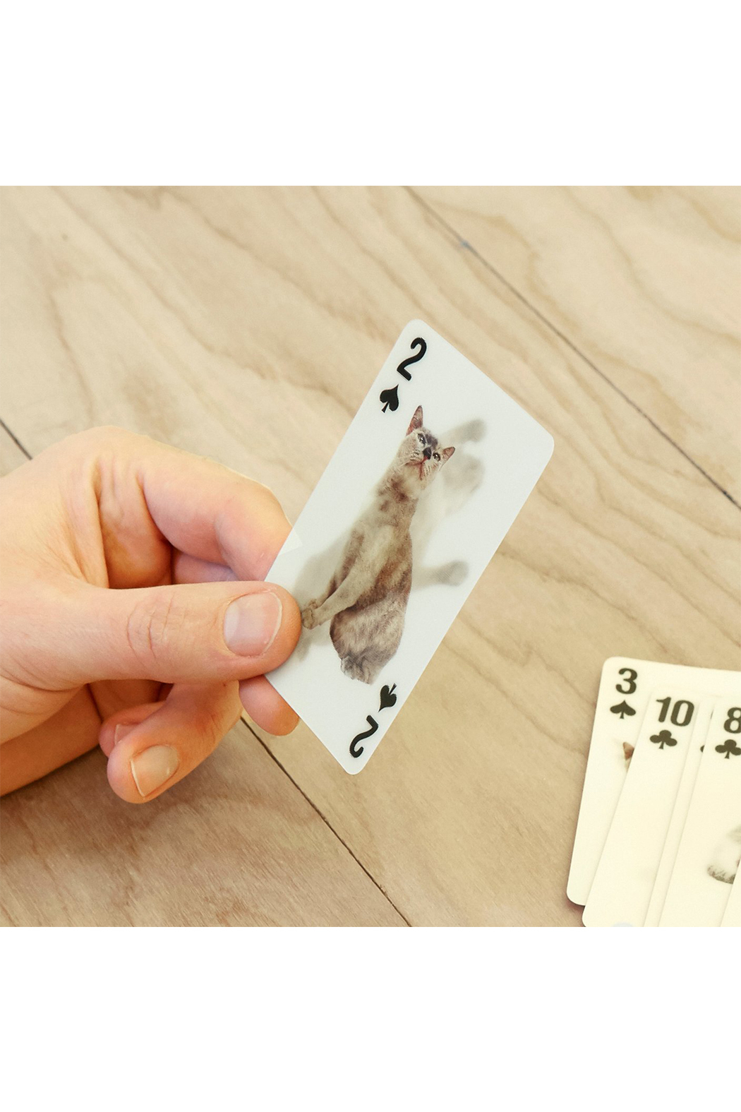 Kikkerland 3-D Cat Playing Cards - Side Cropped Image