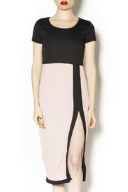 Black Box Boutique Black Rose Slit Dress - Product Mini Image