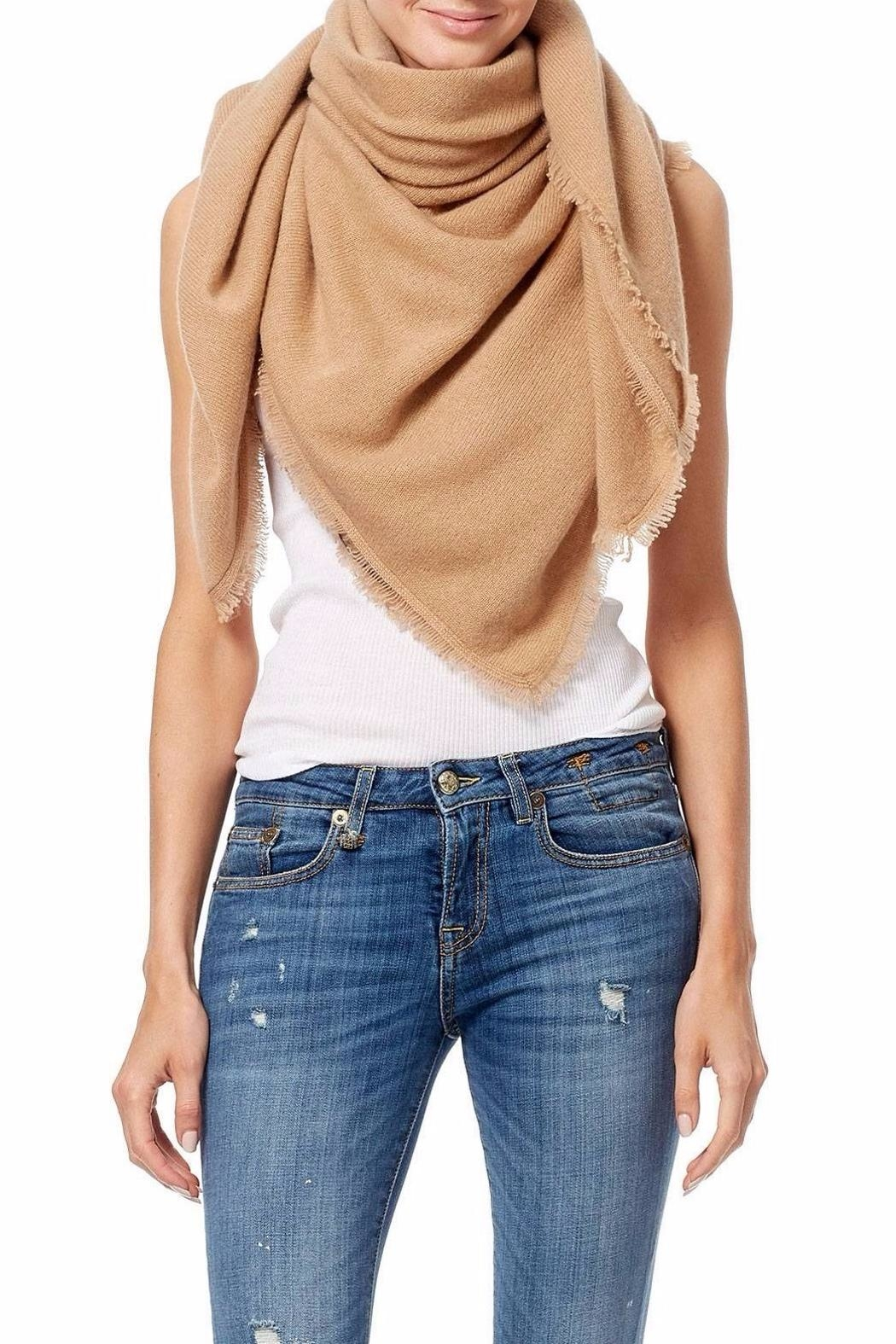 360 Cashmere Sandra Scarf - Front Cropped Image