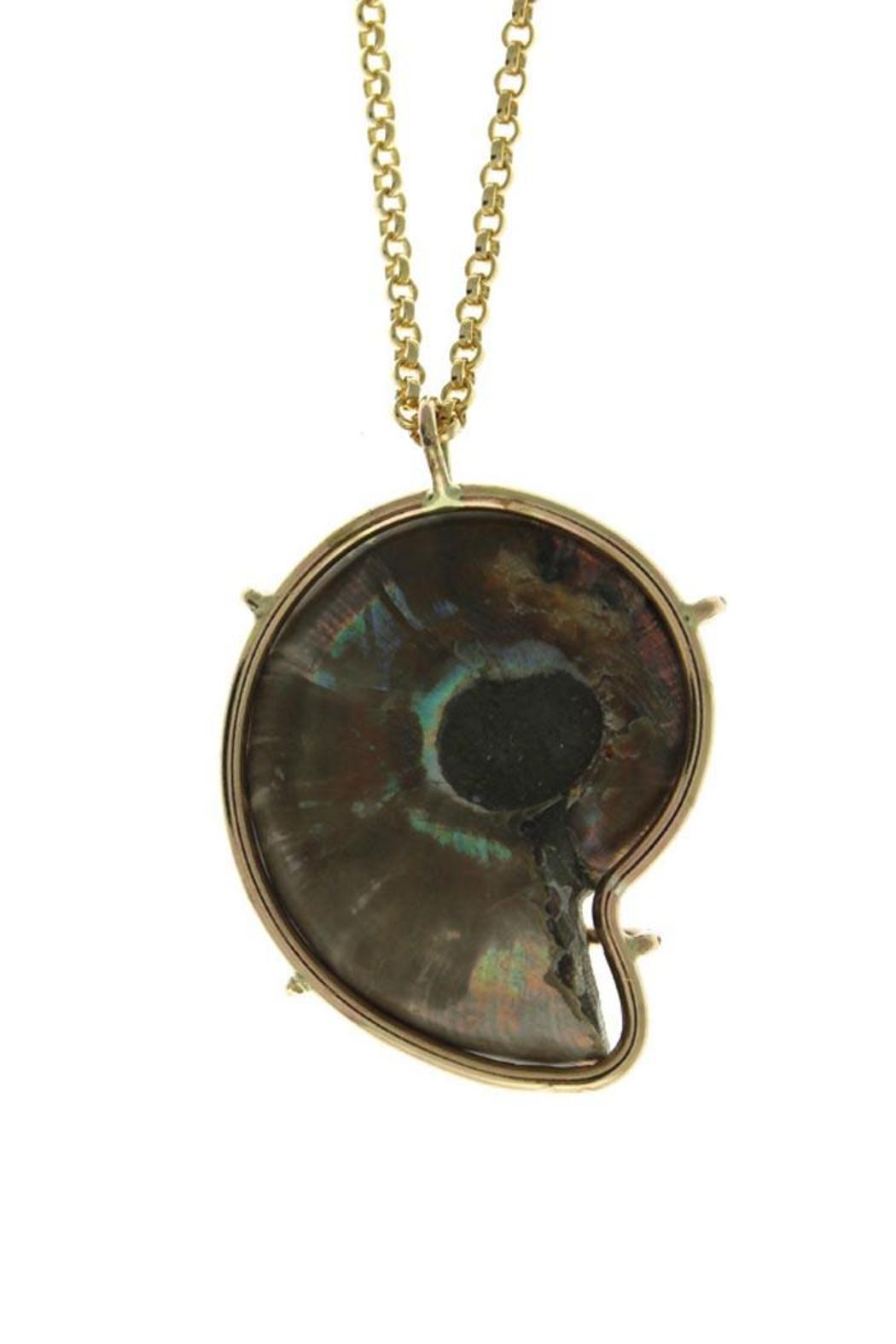 Wings Hawai'i Ammonite Fossil Necklace - Side Cropped Image