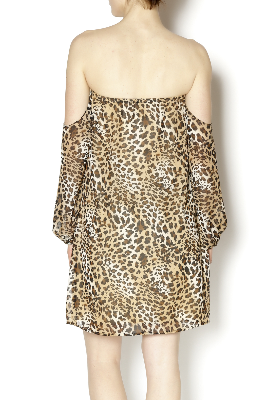 Turquoise Haven Leopard Dress - Back Cropped Image