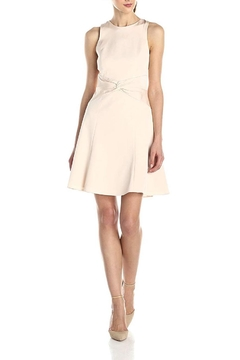 4.Collective Blush Sheath Dress - Product List Image