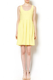 Pinkyotto Candy Darling Dress - Front full body
