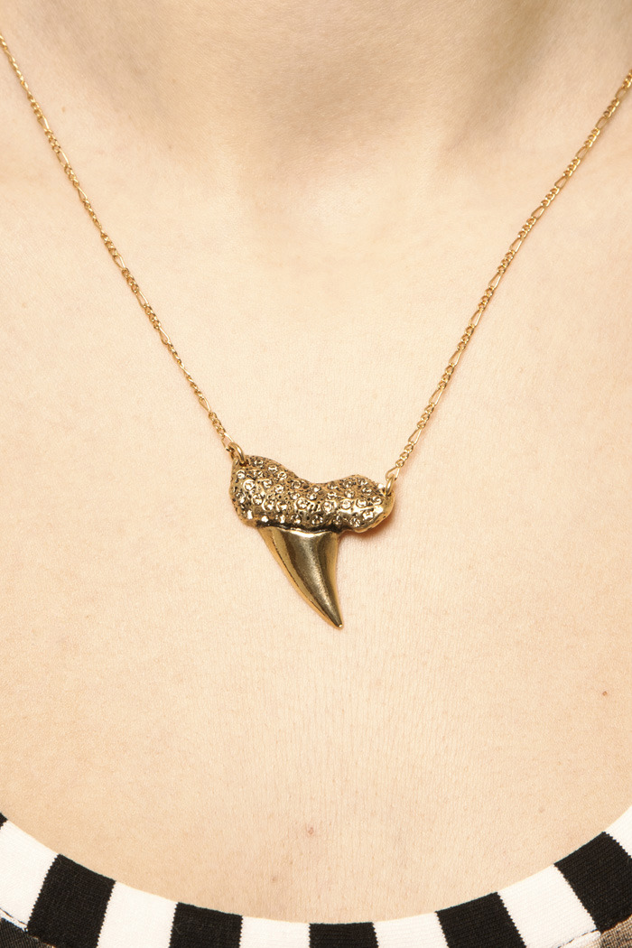 Viento Shark Tooth Necklace - Main Image