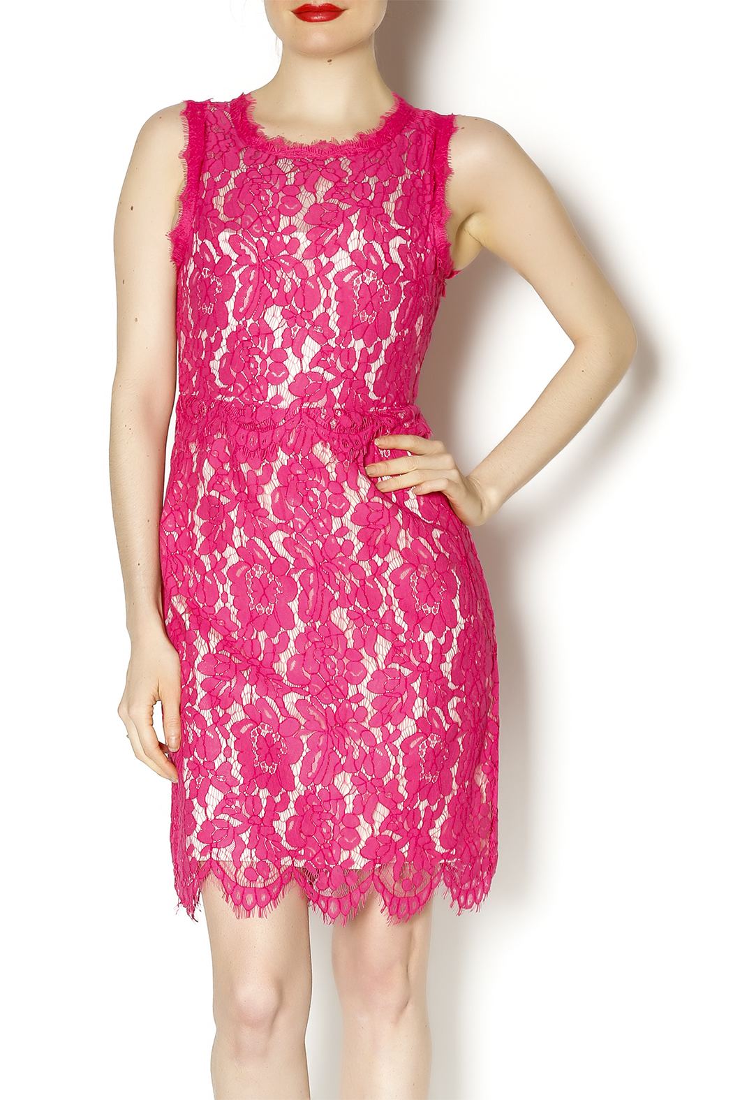 Darling Pink Lace Dress - Main Image