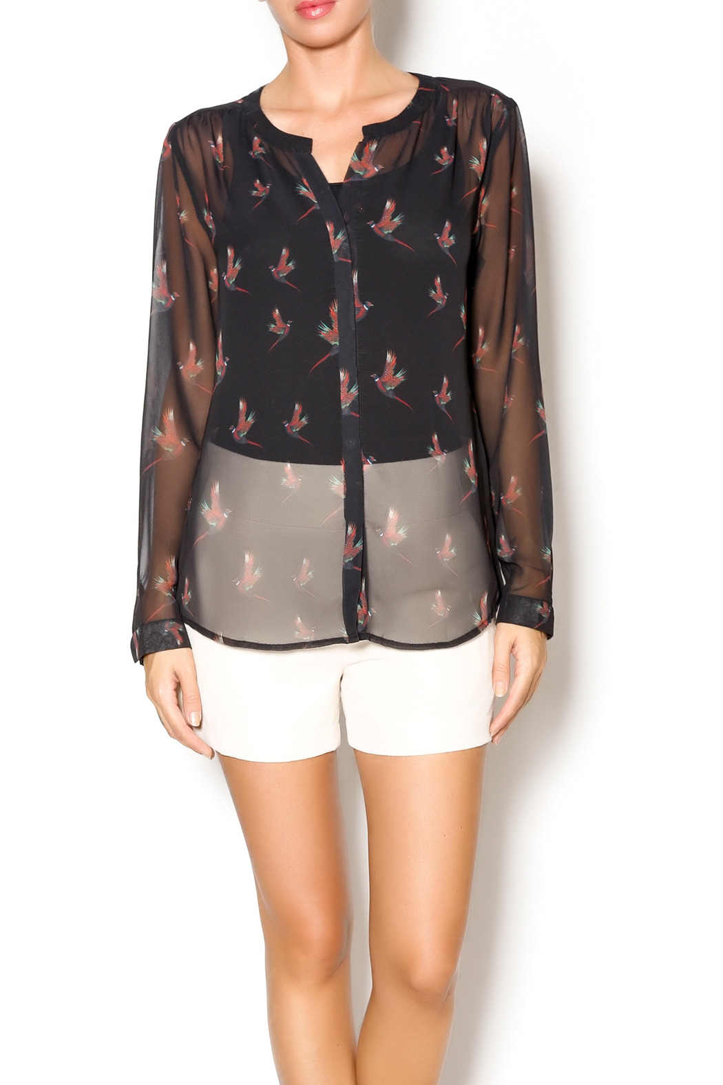 Ecru Pheasant Sleeve Blouse - Front Cropped Image