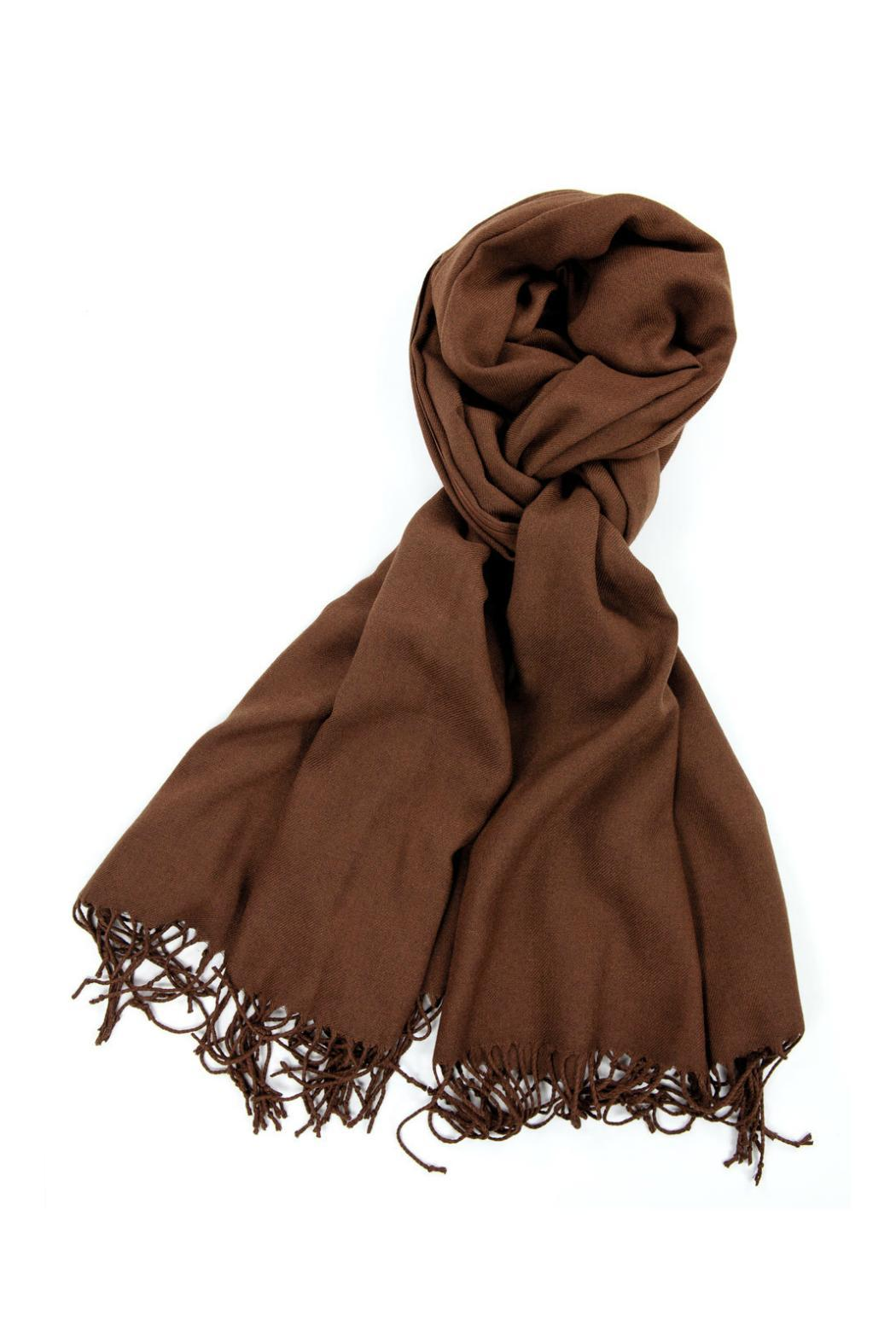 6th Borough Boutique Brown Pashmina Scarf - Front Cropped Image