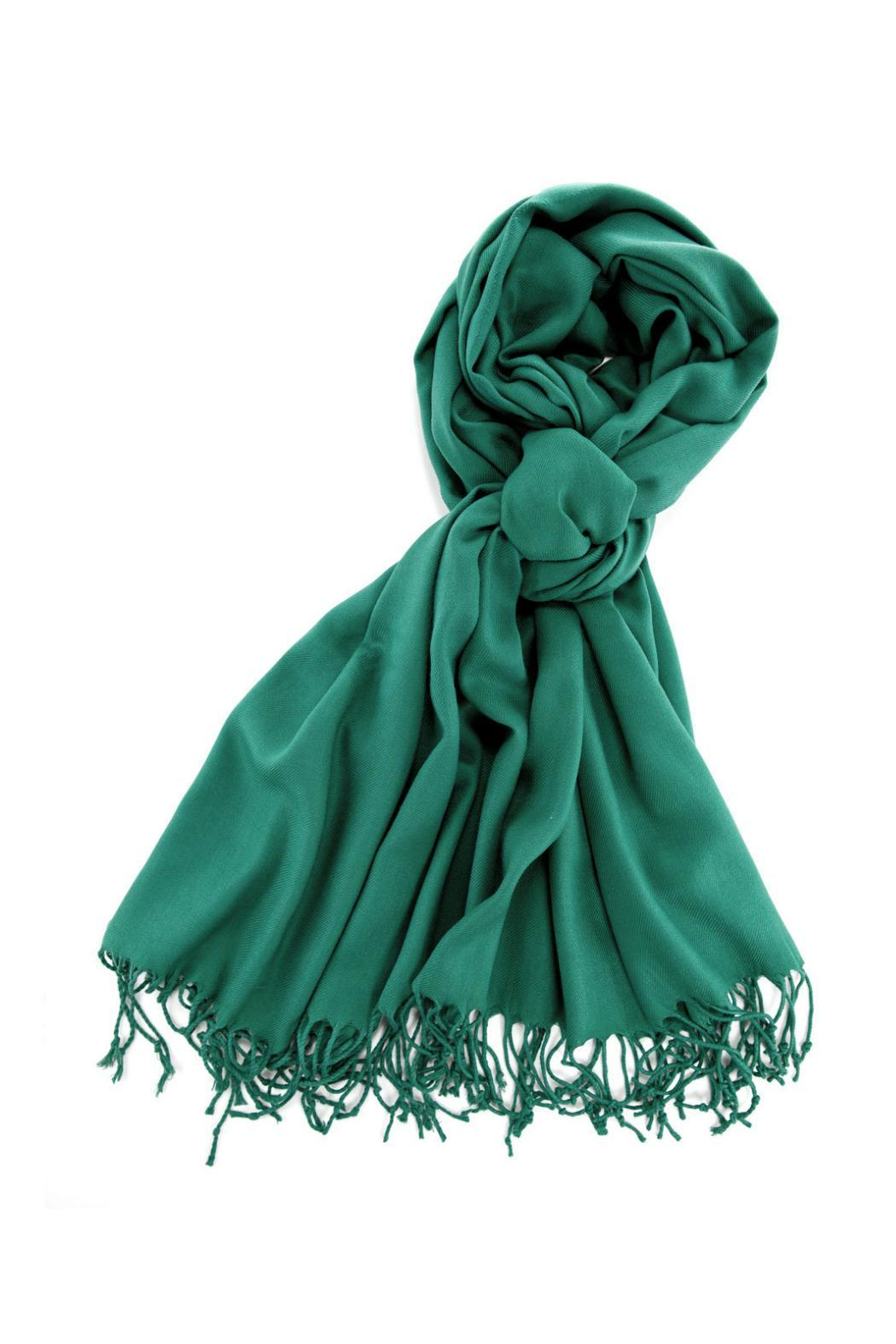 6th Borough Boutique Green Pashmina Scarf - Front Cropped Image