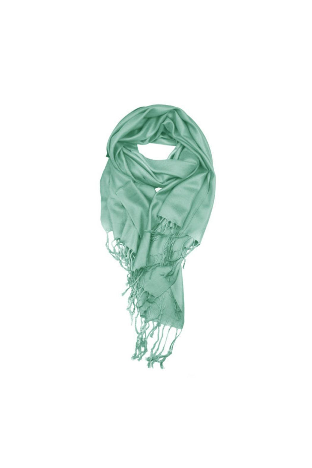 6th Borough Boutique Mint Pashmina Scarf - Main Image