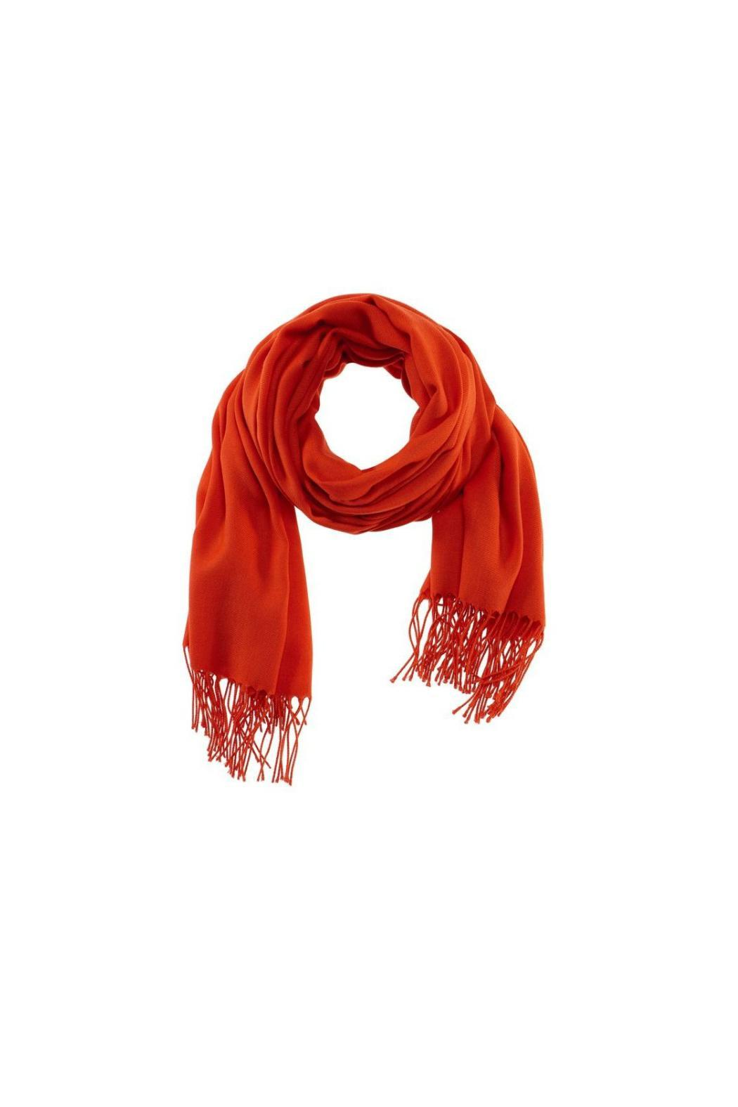 6th Borough Boutique Orange Pashmina Scarf - Front Cropped Image
