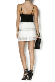 Parker Westin Leather Skirt - Side cropped