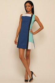 Lois Eastlund Mod dress - Front full body