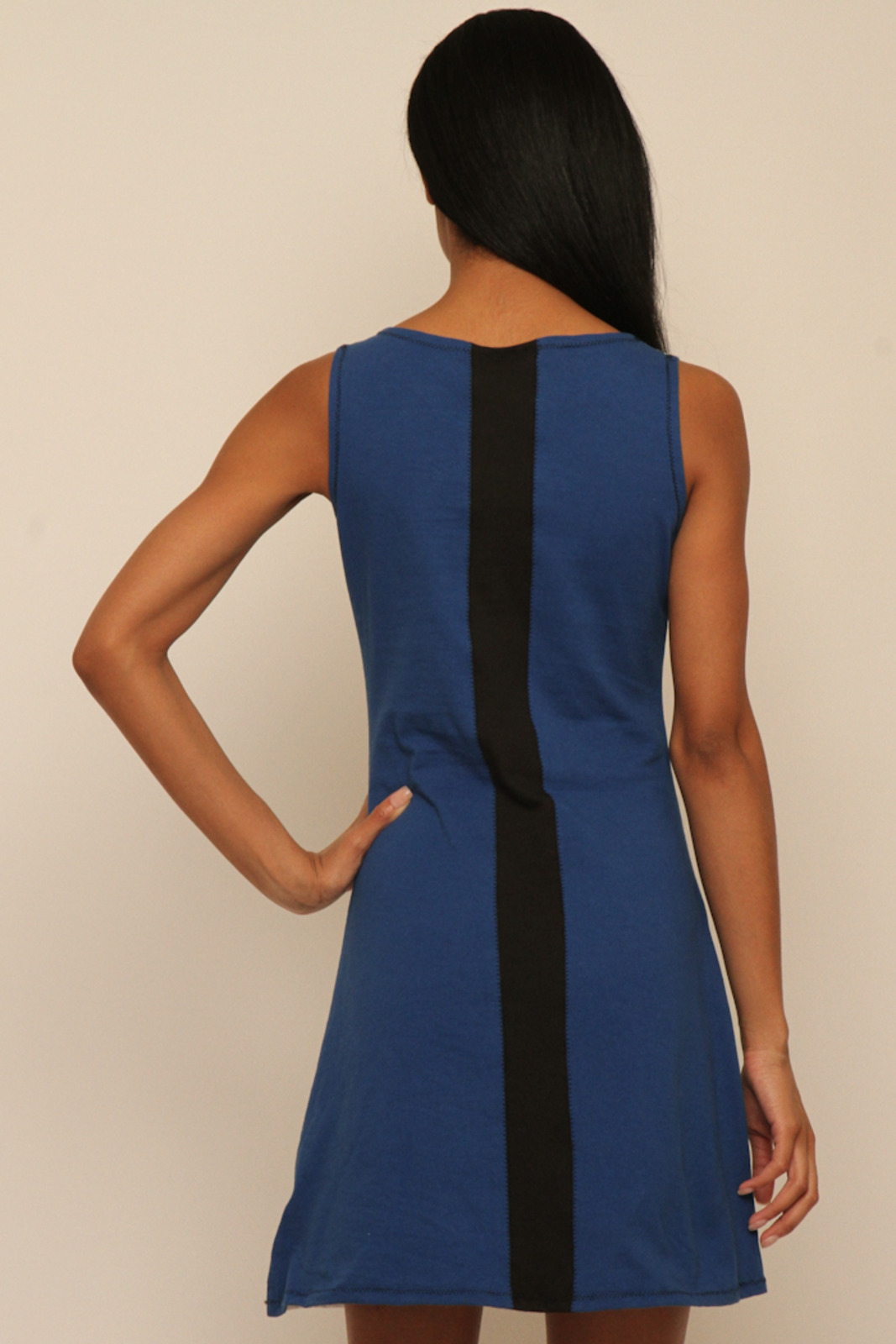 Lois Eastlund Mod dress - Back Cropped Image