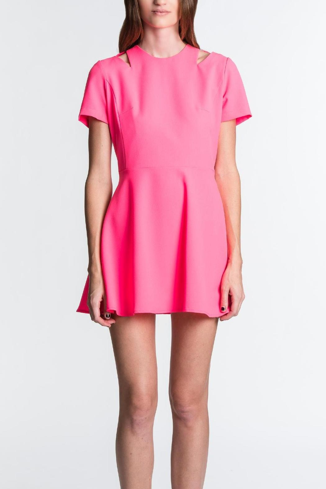 Blaque Label Pink Swing Dress - Front Cropped Image