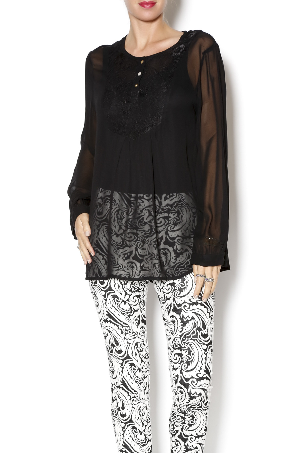 casual studio Black Sheer Blouse - Front Cropped Image
