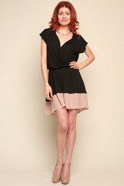 Mason Silk Wrap Dress - Front full body