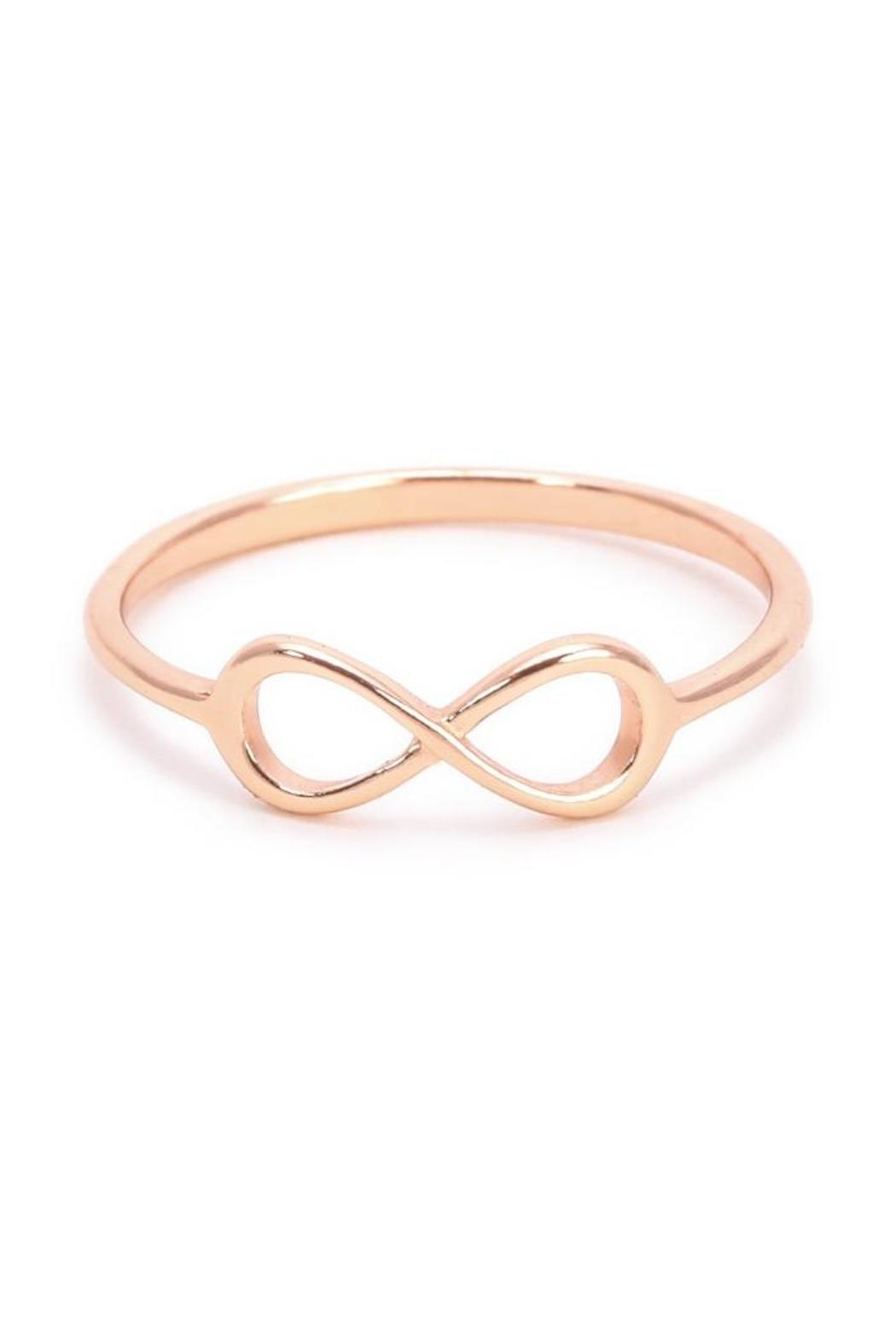 Earthy Chic Silver Infinity Ring - Front Cropped Image