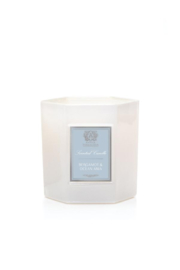 The Birds Nest 9 OZ BERGAMOT & OCEAN ARIA - Front cropped