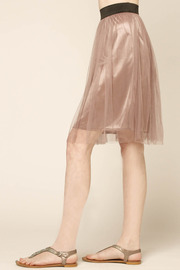 Lush Lavender Tulle Skirt - Front full body
