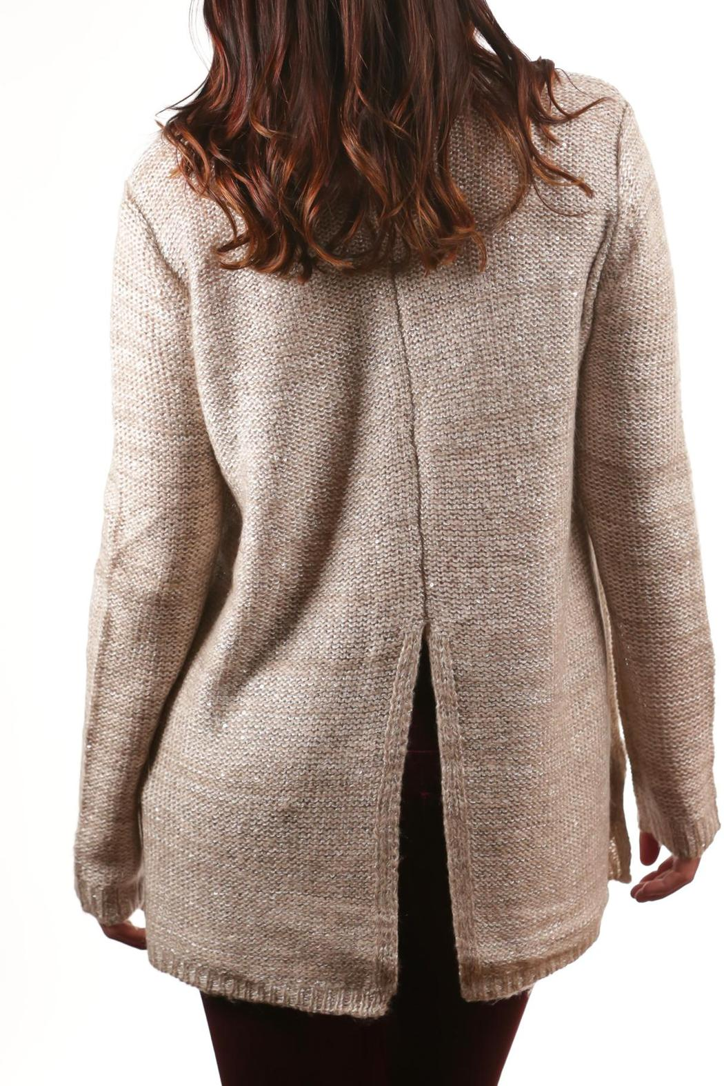 BB Dakota Knitted Sequin Sweater - Back Cropped Image