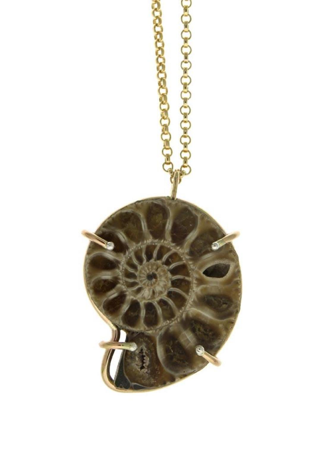 Wings Hawai'i Ammonite Fossil Necklace - Front Cropped Image
