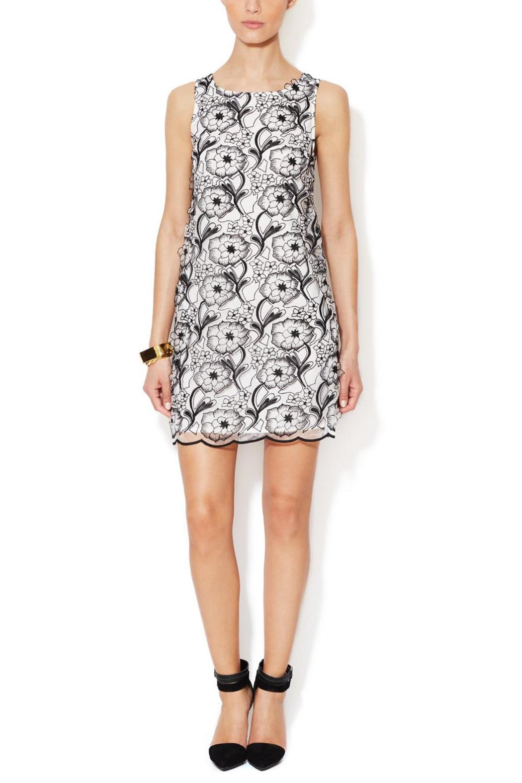Erin Fetherston 3D Floral Dress - Main Image