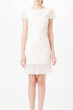 Shoptiques Product: Sheer Gingham Dress