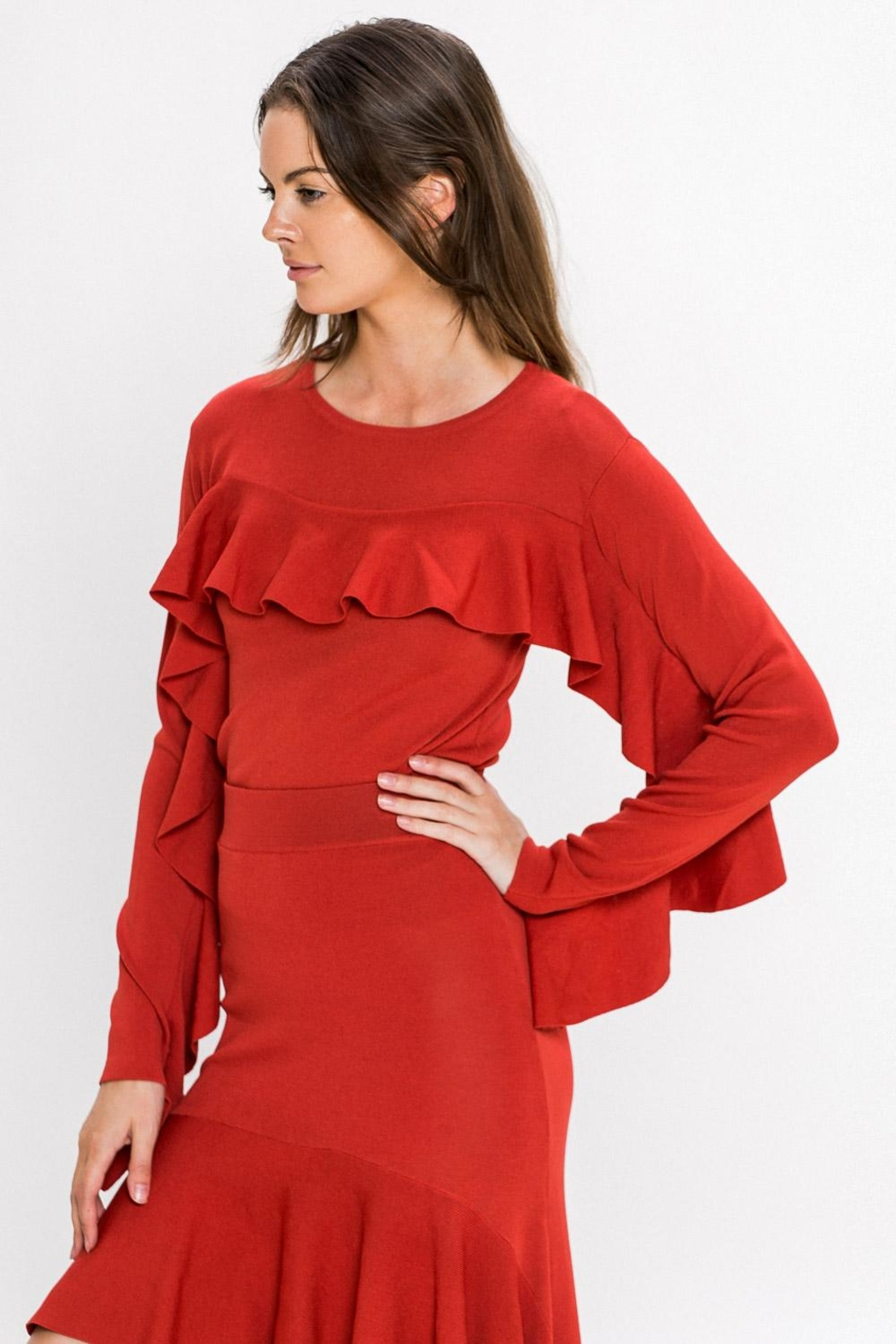A. Calin Rust Ruffle Sweater Top - Back Cropped Image