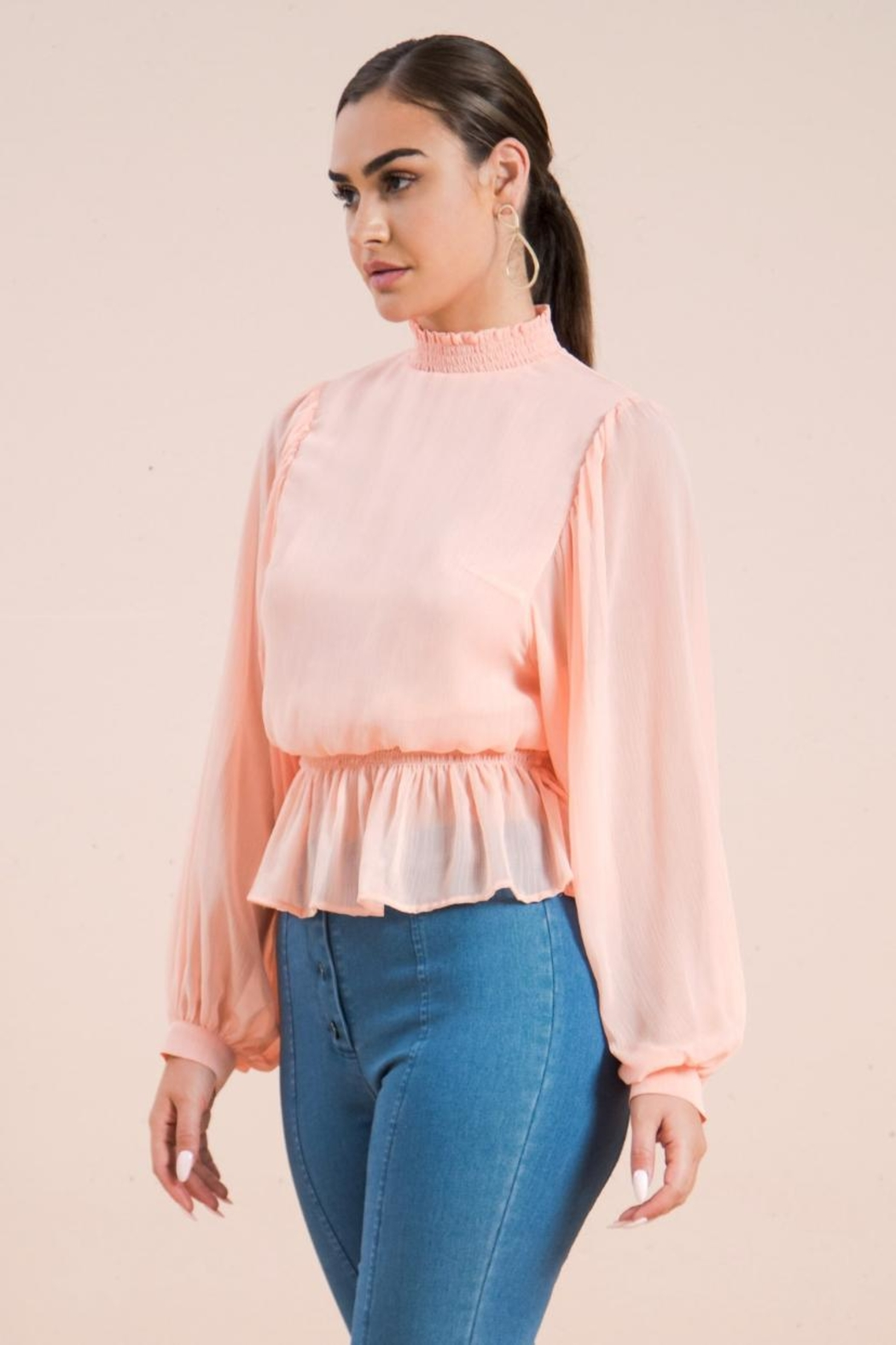 A. Calin Semi Sheer Top - Front Cropped Image