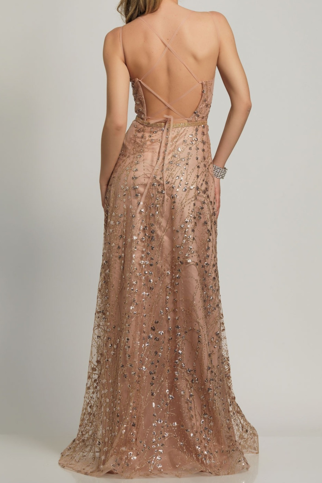 Dave and Johnny A-Line Sheer Tie Back Gown - Front Full Image